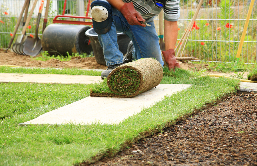 Landscaping Ascot